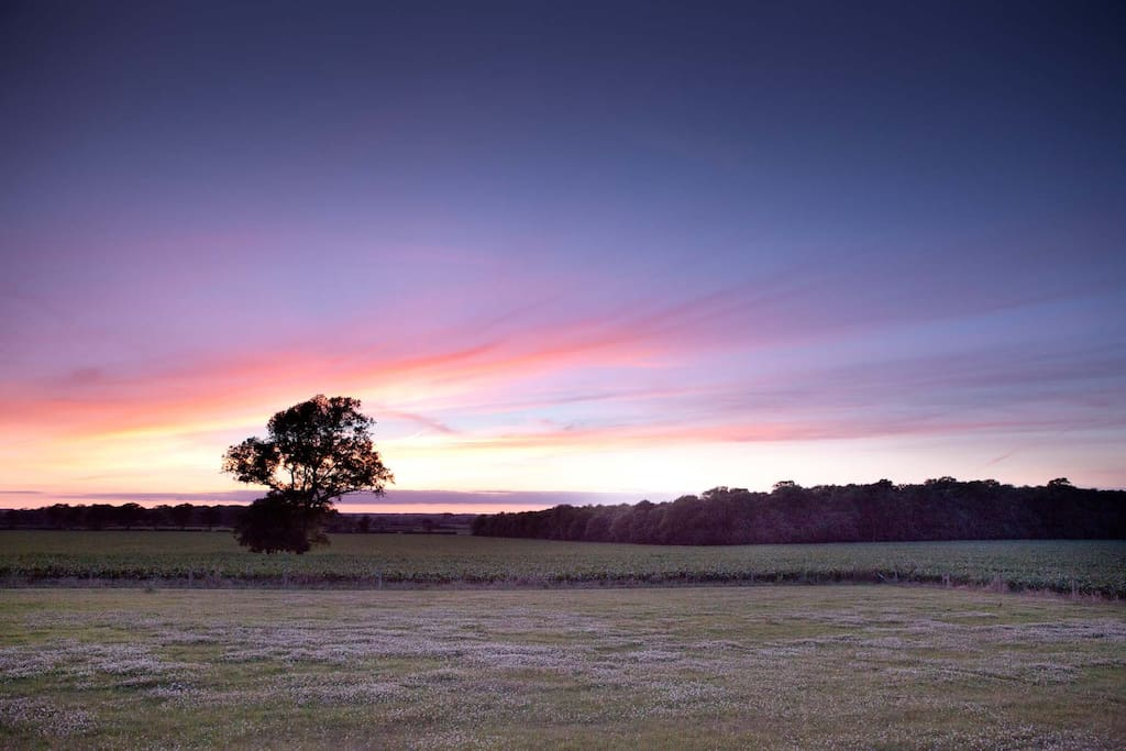 View across the Oxfordshire countryside from the garden at sunset