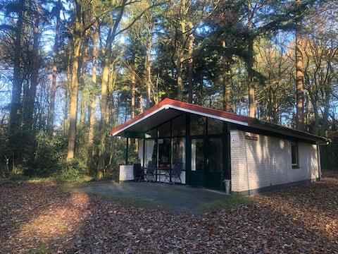 Oudemirdum, boshuis in Zuidwest Friesland