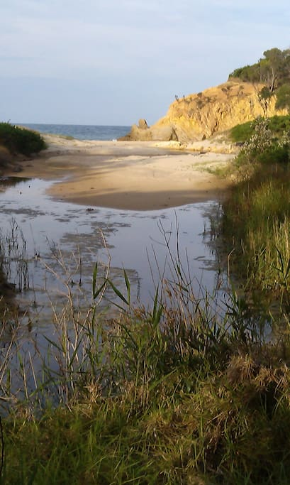 Safe swimming and pristine coastline and national parks all within 1km.