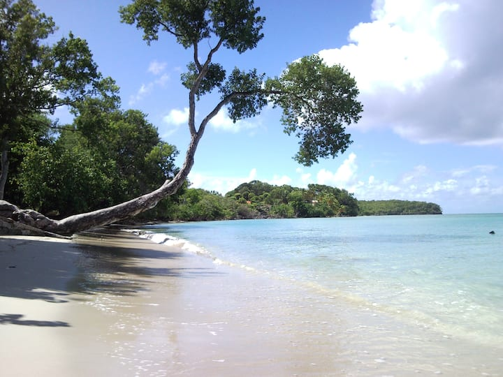 Studio vue mer, plages,bar-piscine, voiture option