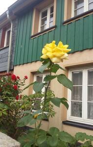 Wernigerode-Klassische,  preiswerte Ferienwohnung