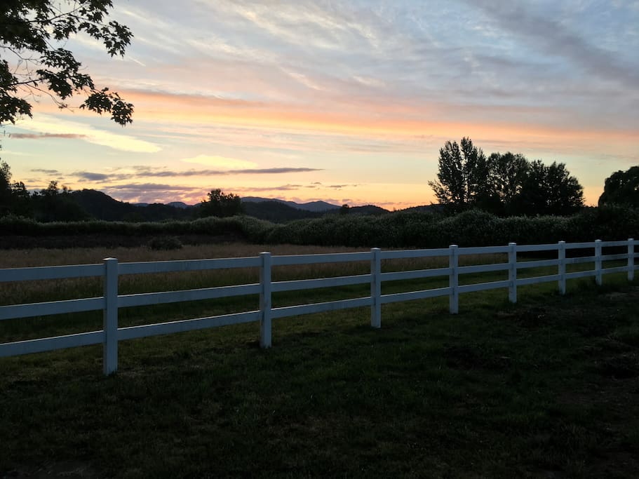 Sunset view over the Blackberry vines