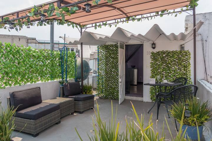 (10)Roof Apartment in Colonia Roma by Condesa