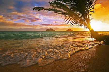 Sunrise in Paradise