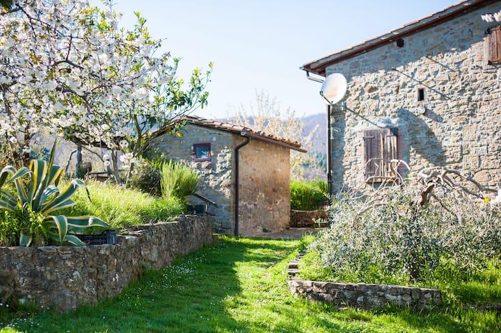 Casale la Bella Toscana