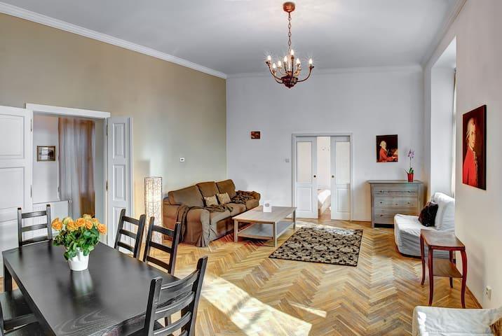 Mozart historic 1BR apartment