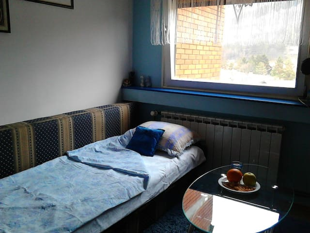 Enjoyable Bosnian Family Experience - Tuzla - Apartment