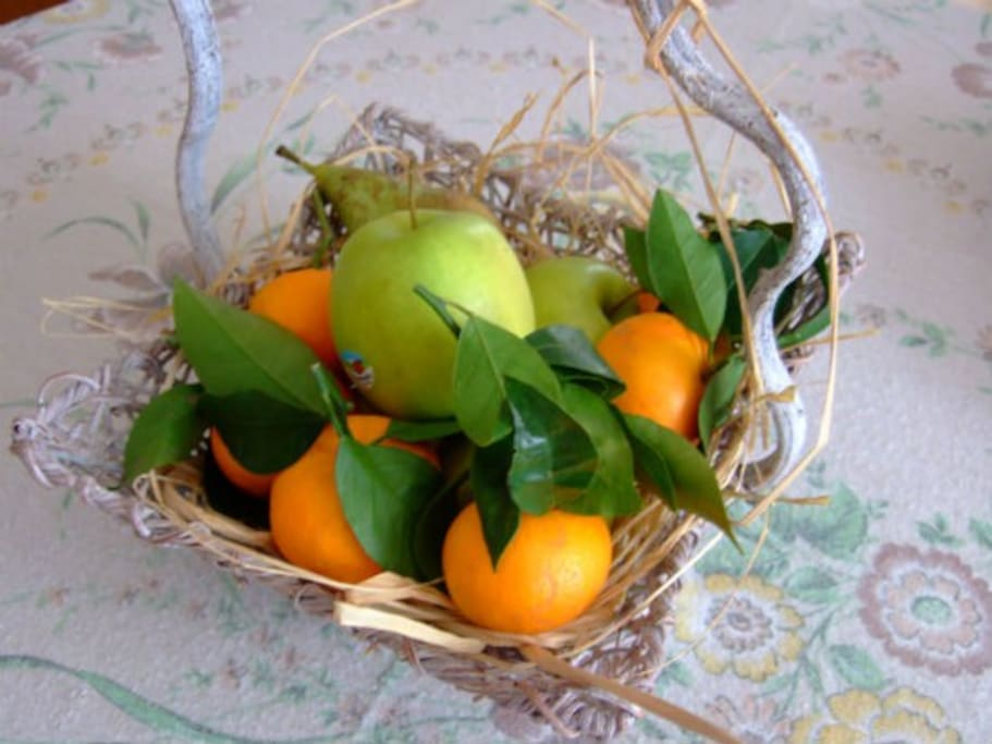 Fresh fruit or local food basket on demand. Italian cooking lessons are also available.