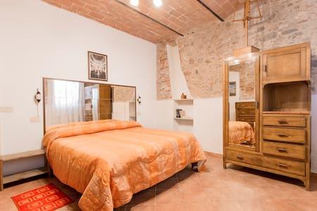 """Barsanti"" apartment, garden & WIFI - Apartment"