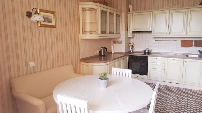Cozy apartment near the Dnieper river