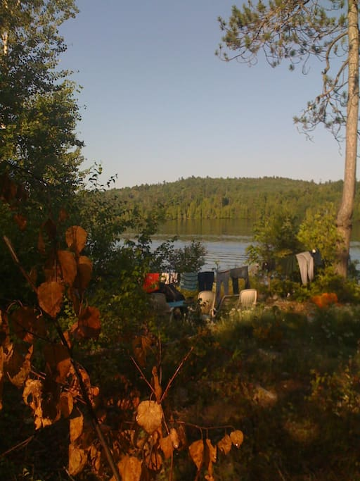 The view from the rain barrel shower, on glamping trip.