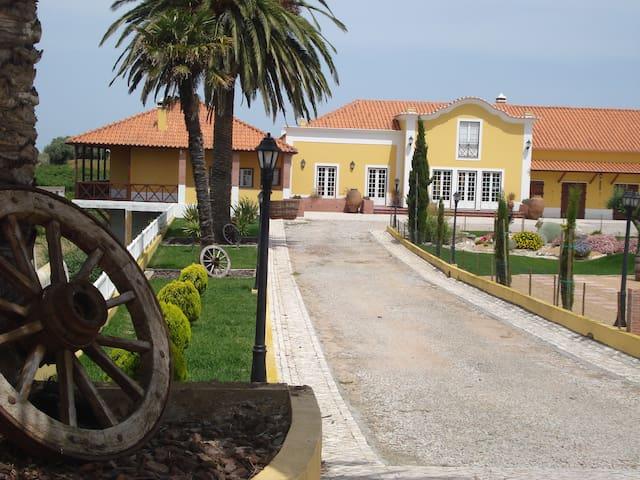 Casa Agricola Quinta da Junqueira - Reguengo Grande - House