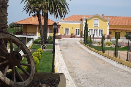 Casa Agricola Quinta da Junqueira - Reguengo Grande