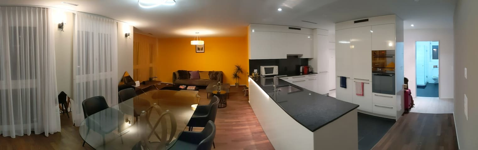 """Luxury Modern Apartment only 15""""min from Downtown"""
