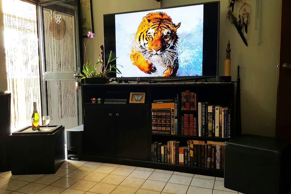 """Guest Bedroom with 70"""" TV Netflix Home Theater and a Balcony"""