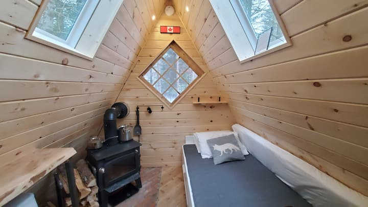 Mini Off-Grid A-Frame Cabin in the Woods