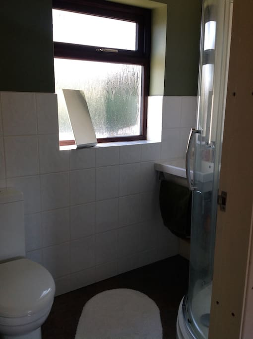 Large corner shower in bathroom