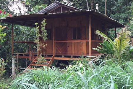 Private cabin retreat in the forest - Kisház
