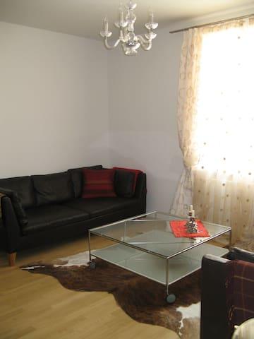 Munich-Haidhausen: Apt (2 rooms) - Munique - Apartamento