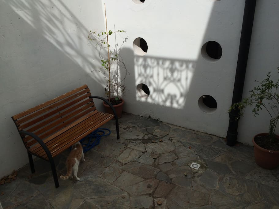 Patio privado de la habitación