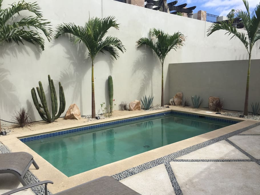 Backyard with Palm Trees and desert style landscaping, private in ground pool, lounge chairs, and a covered area to take a break from the sun.