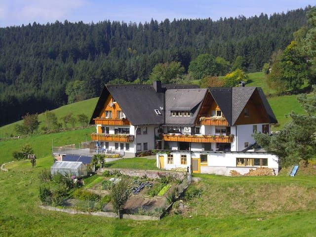 Große Ferienwohnung für 2-6 Person - Sankt Georgen