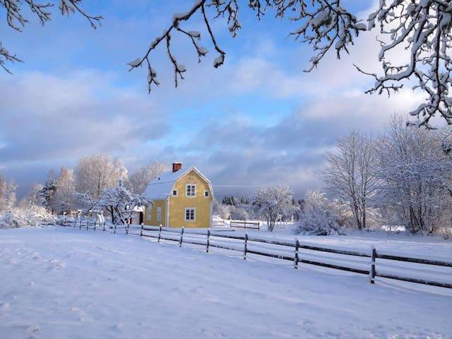Snow in Sweden!