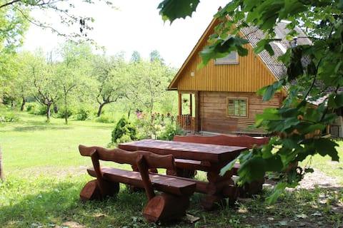 LOST IN LATGALE Sauna House