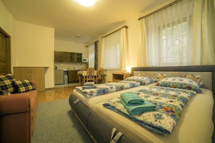 Bezbarierový apartmán ve Vrchlabí - Pension 220