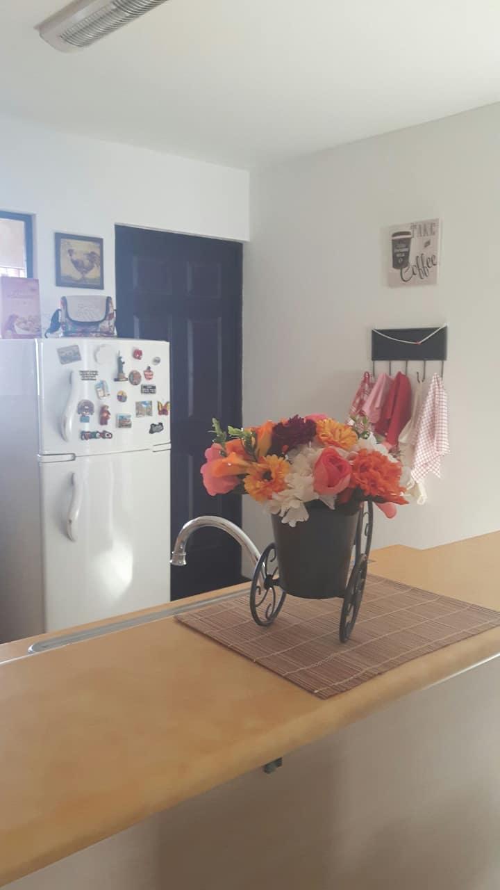 Lovely apartment. San Pablo, Heredia