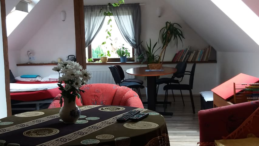 Cozy Loft-Apartment - Prag - Ev