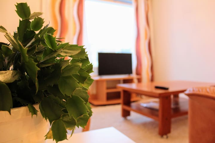 A cozy place with sauna near the airport. - Vantaa - Appartement