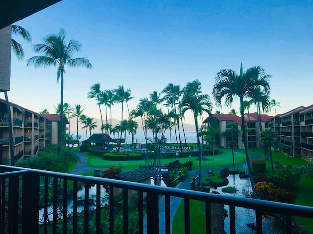 Papakea Resort  D-308  Dreaming of Maui