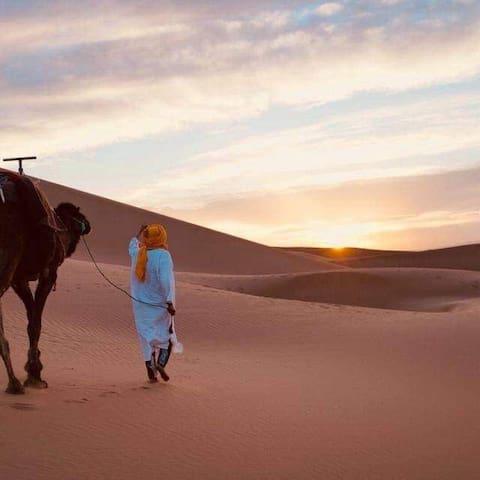 Marrakech Agadir Casablanca 07 nuitées 08 jours )
