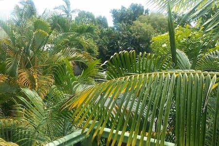 Tropical serenity at Machans