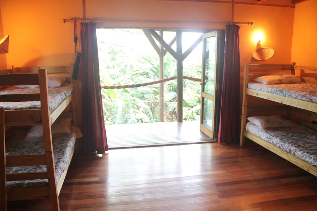 Bedroom with two sets of bunk beds, sleeping four, en suite with jungle view.