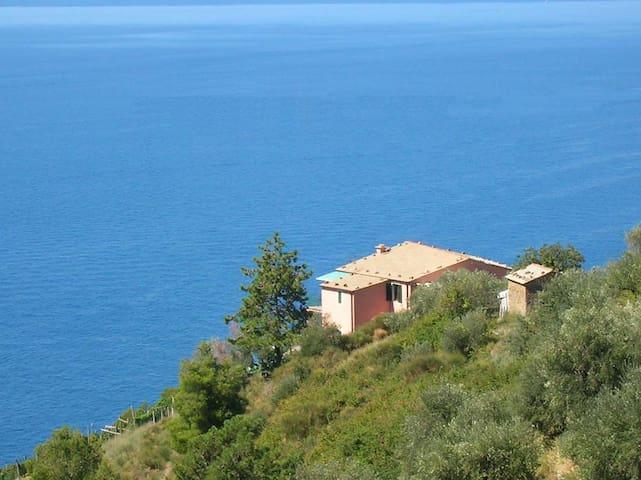 Poggio del Salice: apt Cinque Terre - Bonassola