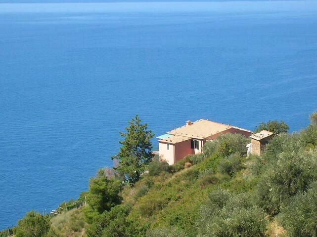 Poggio del Salice: apt Cinque Terre