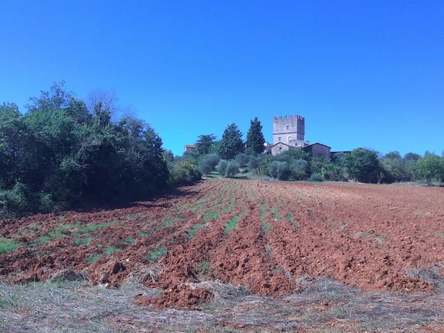 Next to castle of Villa-Siena. heart Francigena - Monteriggioni