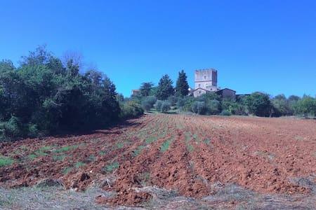 Next to castle of Villa-Siena. heart Francigena - Монтериджони - Дом