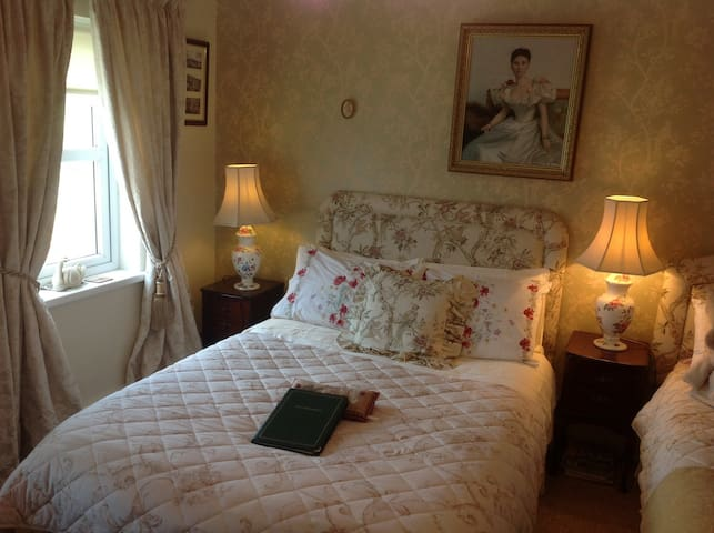 Killyliss House 1 hr North of Dublin in Ballybay - Ballybay - Bed & Breakfast