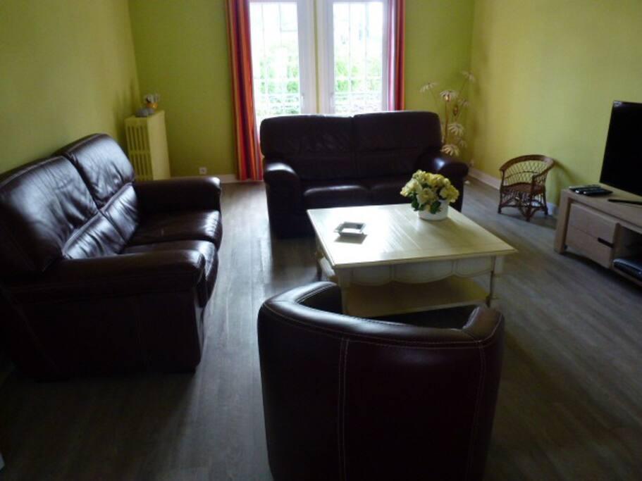 Grand Salon avec canapé cuir et TV écran plat