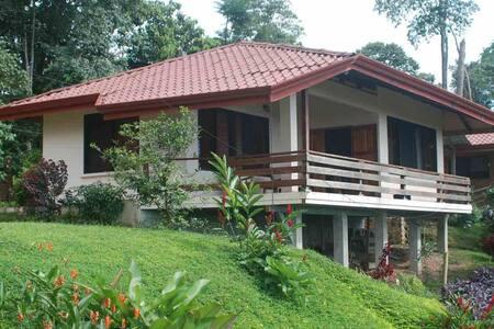 Many's House -  Villa Piedra