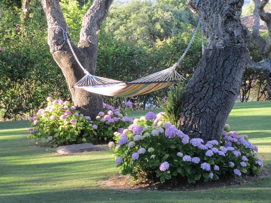 Have a siesta in the hammock. The many cork oaks in the extensive gardens offer dappled shade throughout the day.