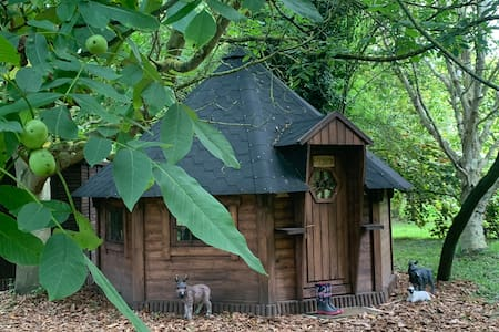 """""""Cozy Nook """"  Glamping with Donkeys (adults only)"""