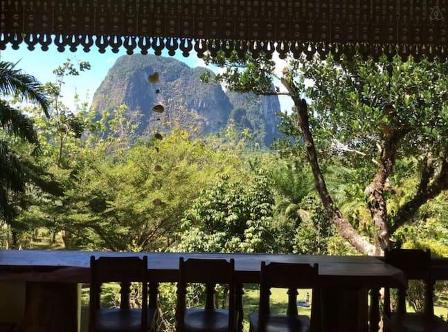 Eco Villa Farmstay:-Using 1 Bedroom - Tambon Khao Thong - Dom