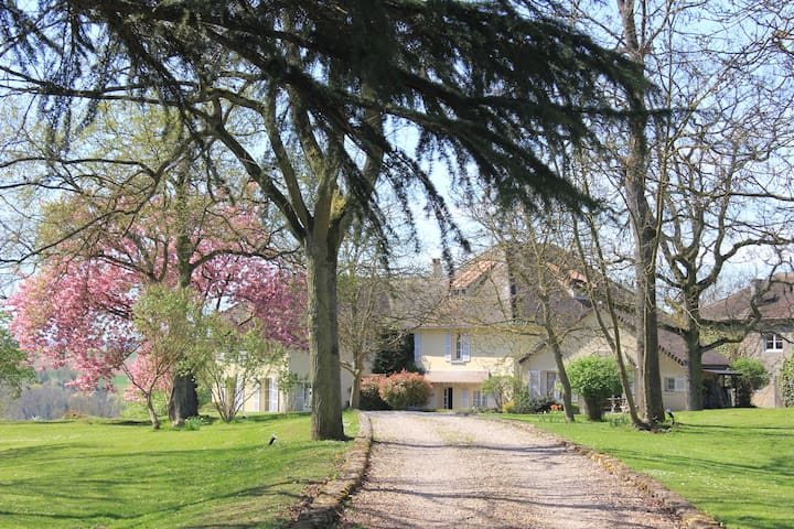 CHARMING COTTAGE NEAR VERSAILLES - Maule - Hus