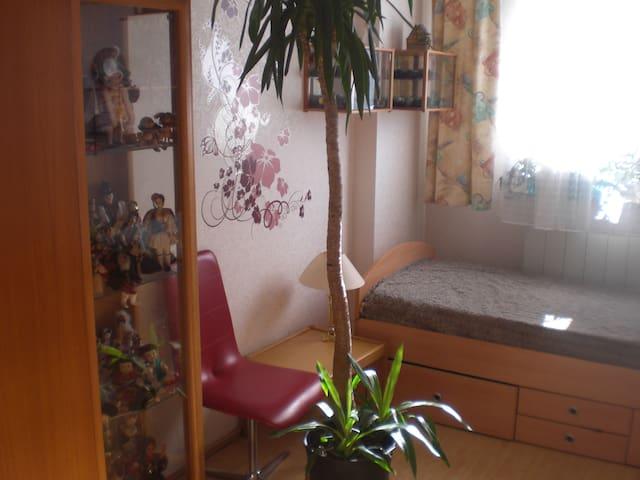 gemütliches Zimmer für Kurzbesuche - Nürnberg - Bed & Breakfast