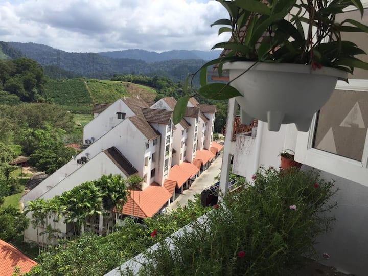 Bukit Tinggi Fuchsia Hillhomes