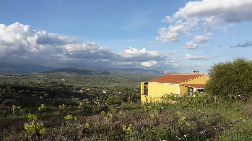 """Casa de campo """"Balcón de las Viñas"""" - Malpartida de Plasencia - House"""